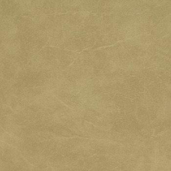 Carrara.Parchment.CR-505_0