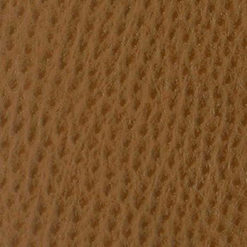 Phoenix.Chestnut.TPH-102_0